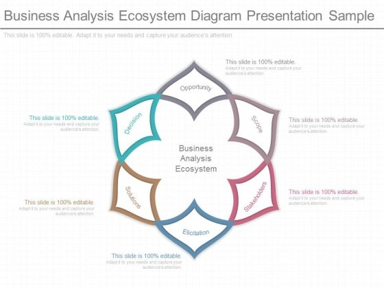 Business Analysis Ecosystem Diagram Presentation Sample Powerpoint