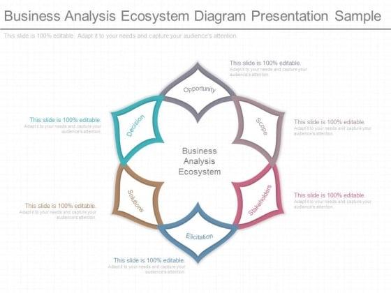 Business Analysis Ecosystem Diagram Presentation Sample