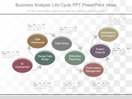 Business Analysis Life Cycle Ppt Powerpoint Ideas