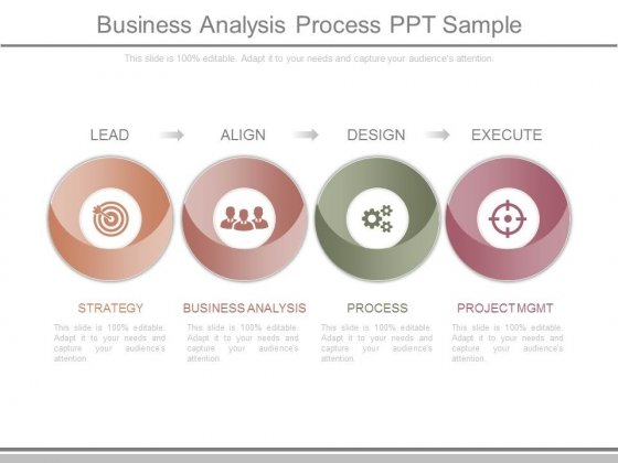 Business Analysis Process Ppt Sample