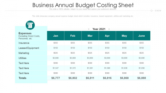 Business Annual Budget Costing Sheet Ppt PowerPoint Presentation Outline Structure PDF
