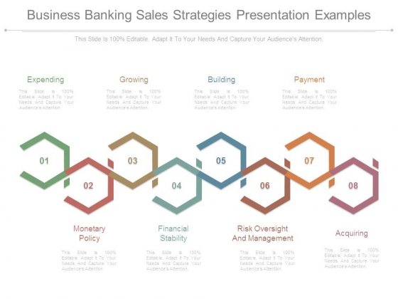 Business Banking Sales Strategies Presentation Examples ...