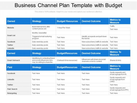 Business Channel Plan Template With Budget Ppt PowerPoint Presentation Gallery Layout PDF