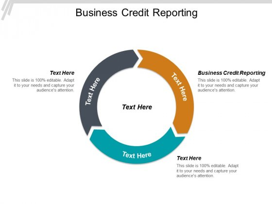 Business Credit Reporting Ppt PowerPoint Presentation Styles Display Cpb