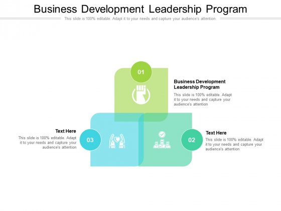 Business Development Leadership Program Ppt PowerPoint Presentation Layouts Objects Cpb Pdf