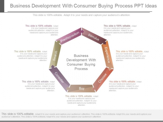 Business Development With Consumer Buying Process Ppt Ideas