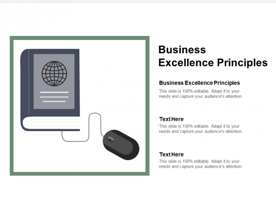 Business Excellence Principles Ppt PowerPoint Presentation Inspiration Professional Cpb