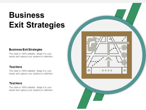 Business Exit Strategies Ppt PowerPoint Presentation Show Example Cpb