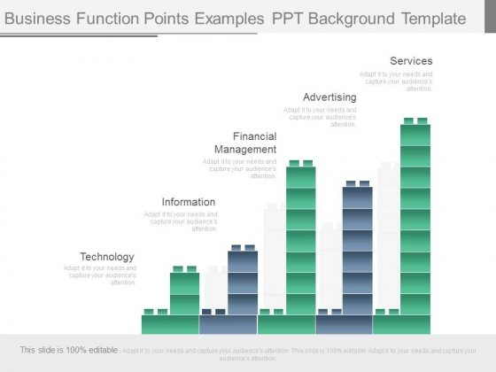 Business Function Points Examples Ppt Background Template