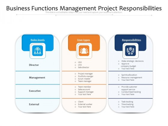 Business Functions Management Project Responsibilities Ppt PowerPoint Presentation Slides File Formats PDF