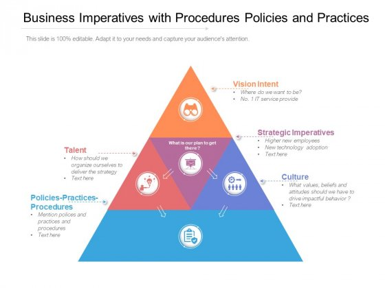 Business Imperatives With Procedures Policies And Practices Ppt PowerPoint Presentation File Background PDF