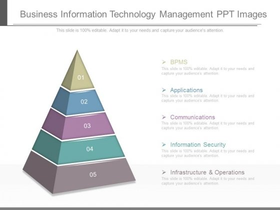 Business Information Technology Management Ppt Images