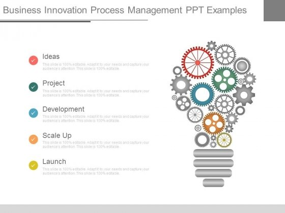 Business Innovation Process Management Ppt Examples