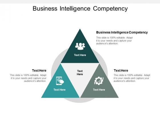 Business Intelligence Competency Ppt PowerPoint Presentation Icon Portfolio Cpb