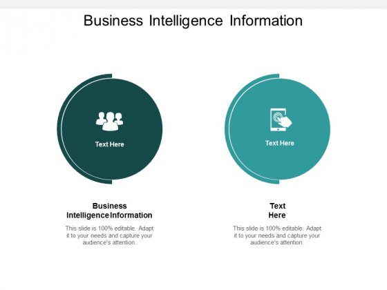 Business Intelligence Information Ppt PowerPoint Presentation Gallery Graphics Tutorials Cpb