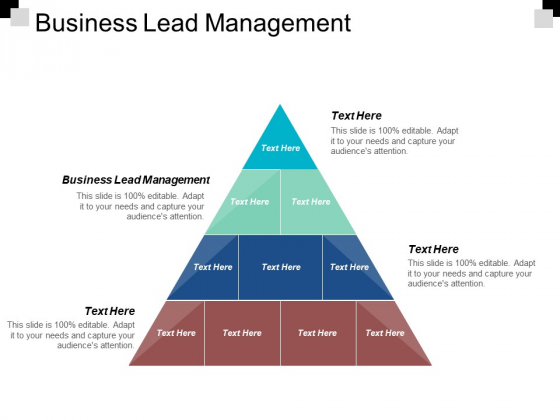 Business Lead Management Ppt PowerPoint Presentation Pictures File Formats