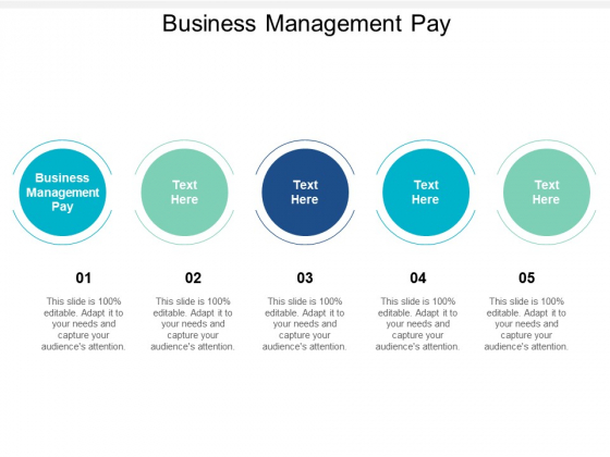 Business Management Pay Ppt PowerPoint Presentation Summary Master Slide Cpb