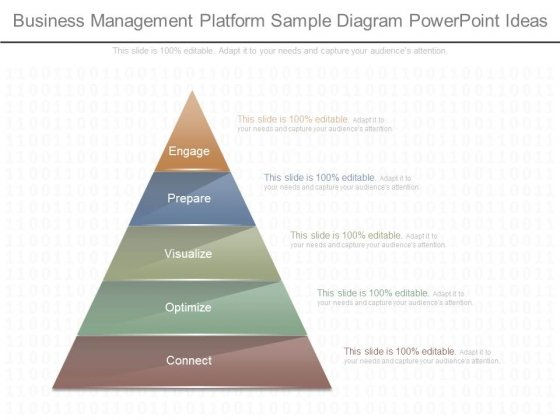 Business Management Platform Sample Diagram Powerpoint Ideas