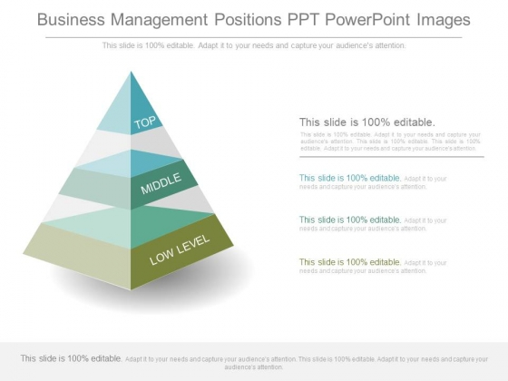 Business Management Positions Ppt Powerpoint Images