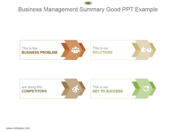 Business Management Summary Good Ppt Example