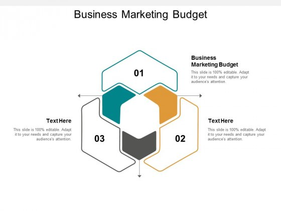 Business Marketing Budget Ppt PowerPoint Presentation Portfolio Outfit Cpb