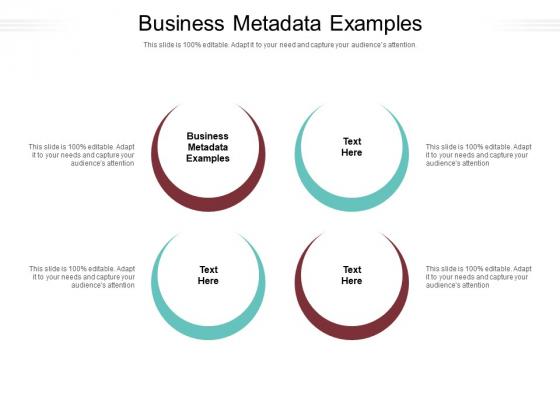 Business Metadata Examples Ppt PowerPoint Presentation Portfolio Themes Cpb Pdf