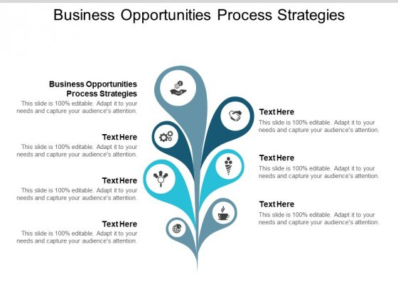 Business Opportunities Process Strategies Ppt PowerPoint Presentation Portfolio Ideas Cpb