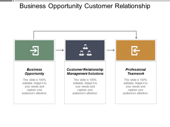 Business Opportunity Customer Relationship Management Solutions Professional Teamwork Ppt PowerPoint Presentation Infographics Graphics