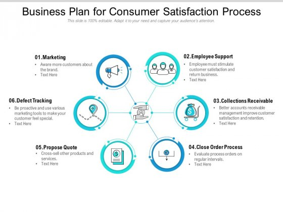 Business Plan For Consumer Satisfaction Process Ppt PowerPoint Presentation Inspiration Visual Aids