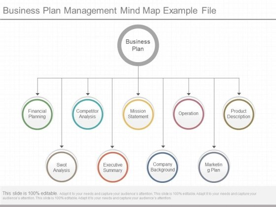 Business Plan Management Mind Map Example File