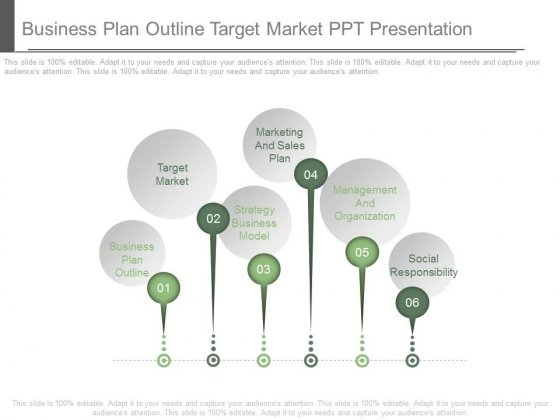 Business Plan Outline Target Market Ppt Presentation   PowerPoint Templates