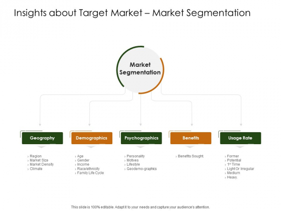 Business Planning And Strategy Playbook Insights About Target Market Market Segmentation Ideas PDF