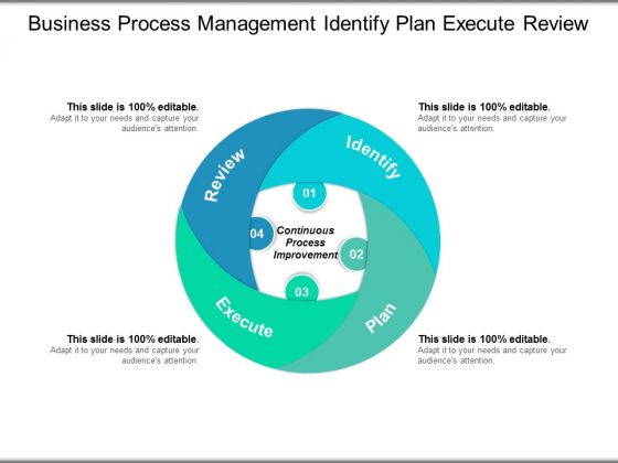 Business Process Management Identify Plan Execute Review Ppt PowerPoint Presentation Professional Outline