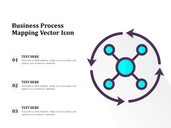 Business Process Mapping Vector Icon Ppt PowerPoint Presentation Slides Clipart PDF