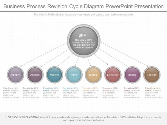 Business Process Revision Cycle Diagram Powerpoint Presentation