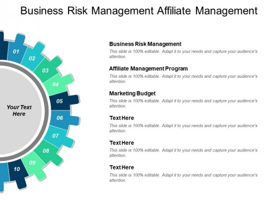 Business Risk Management Affiliate Management Program Marketing Budget Ppt PowerPoint Presentation Inspiration Slideshow