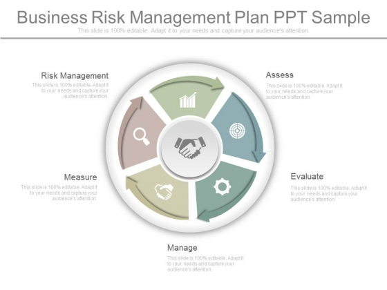 Business Risk Management Plan Ppt Sample