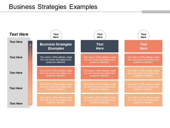 Business Strategies Examples Ppt PowerPoint Presentation Styles Example Cpb