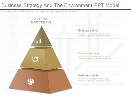 Business Strategy And The Environment Ppt Model