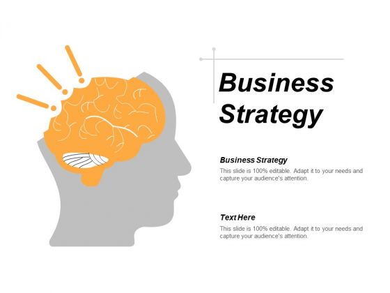Business Strategy Ppt PowerPoint Presentation Styles Tips Cpb