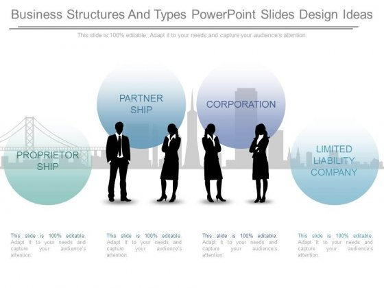 Business Structures And Types Powerpoint Slides Design Ideas