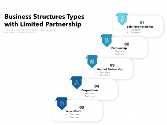 Business Structures Types With Limited Partnership Ppt PowerPoint Presentation Outline Infographic Template PDF