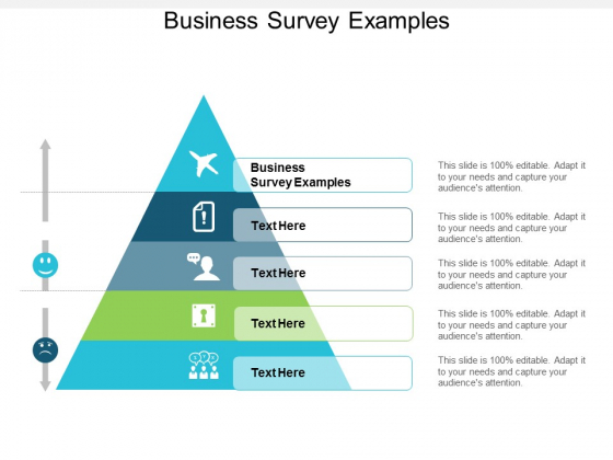Business Survey Examples Ppt PowerPoint Presentation Gallery Microsoft Cpb