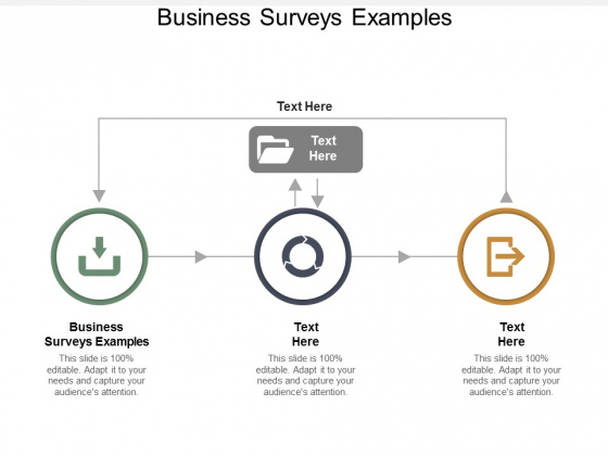 Business Surveys Examples Ppt PowerPoint Presentation Layout Cpb