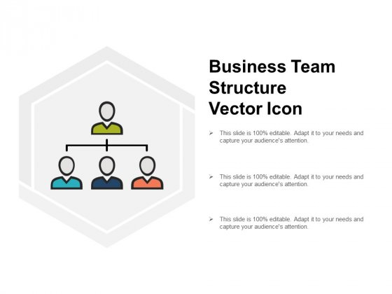 Business Team Structure Vector Icon Ppt PowerPoint Presentation Ideas Visuals