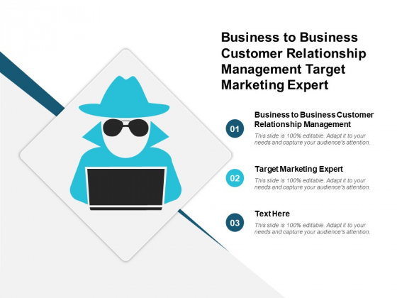 Business To Business Customer Relationship Management Target Marketing Expert Ppt PowerPoint Presentation Infographics Layout Ideas