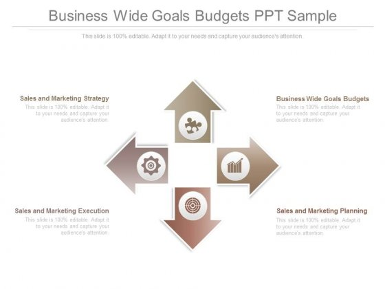 Business Wide Goals Budgets Ppt Sample