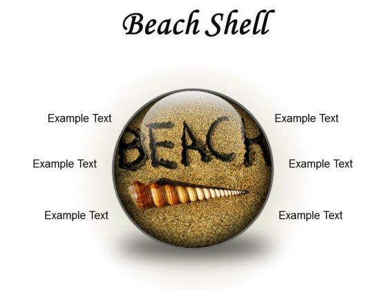 Beach Shell Holidays PowerPoint Presentation Slides C