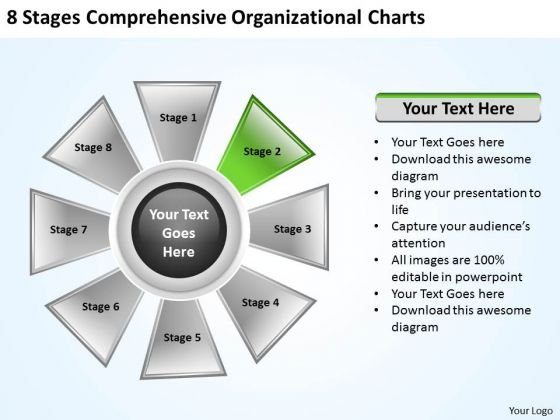 Business Concepts 8 Stages Comprehensive Organizational Charts Marketing Strategy