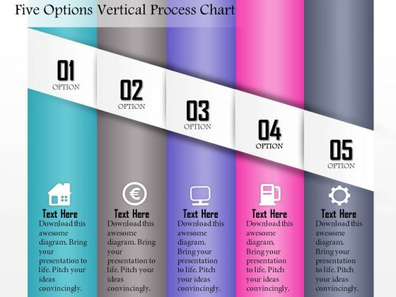 Business Diagram Five Options Vertical Process Chart Presentation Template